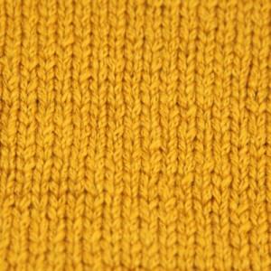 BUCKLANDVY.goldenrod.zoom.3